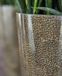 Vita Vase Eggshell Brown